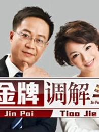 金牌调解海报剧照