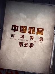 罪案现场实录第五季