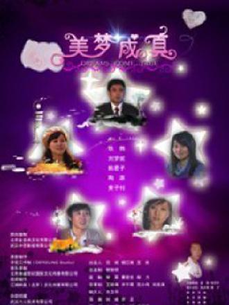 美梦成真(2009)